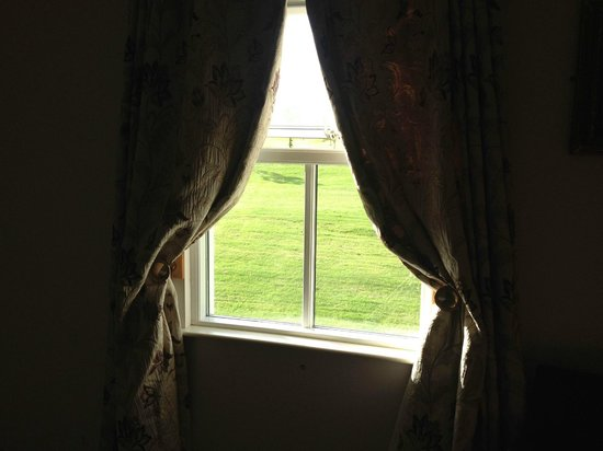 Roganstown Hotel and Country Club: View from window with curtains