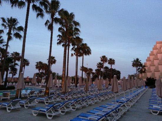 Hipotels  Mediterraneo: Genügend Liegen zum entspannen.