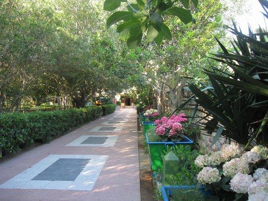 Hotel Riomar: Hotel garden/beach entrance