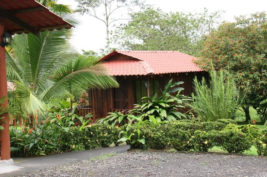 Hotel Rancho Cerro Azul: our cabin
