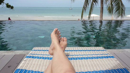 Synergy Samui Resort: Gorgeous infinity pool...must keep outsiders out!