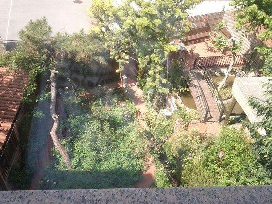 Istanbul Garden Suite : Gartenblick aus Fenster 3.Etage