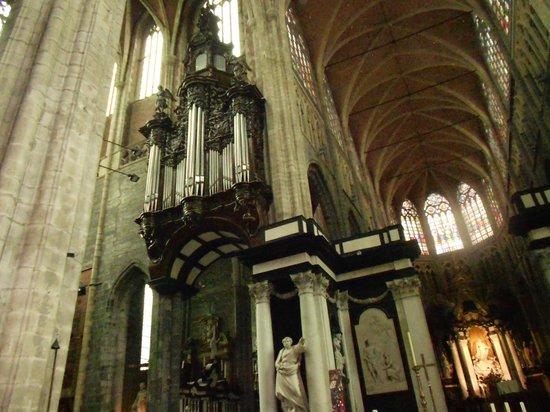 Catedral de San Bravo (Sint-Baafskathedraal): ÓRGANO SAN BRAVO