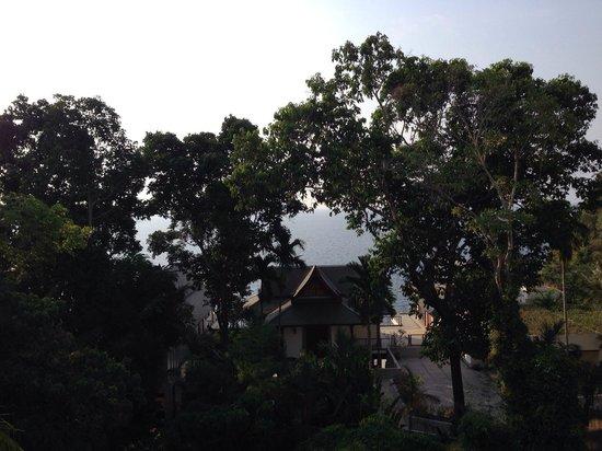 Ayara Kamala Resort & Spa: View from room balcony
