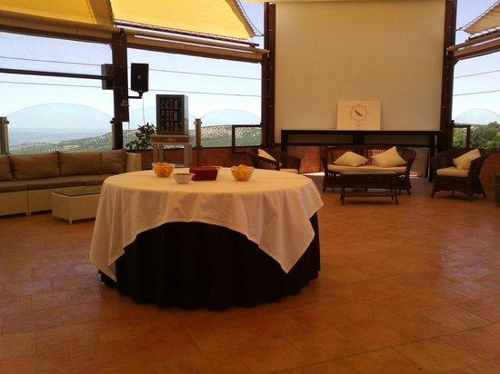 Hotel Campos de Baeza: Terraza superior