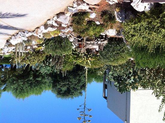 Cretan Malia Park : Parco curatissimo