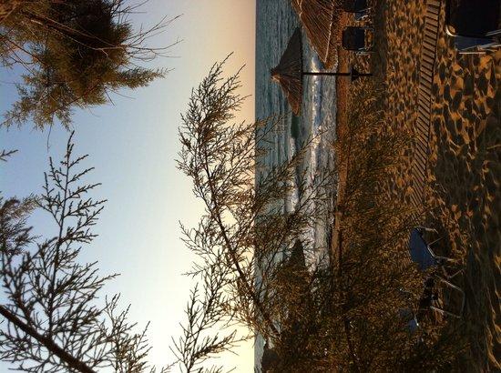 Cretan Malia Park : Beach
