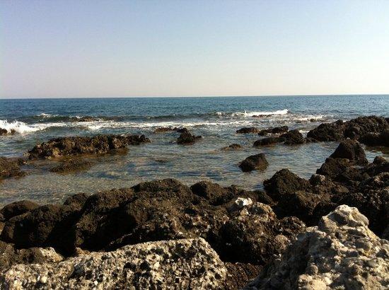 Cretan Malia Park : Insenatura nascoste