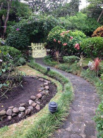 Casa de las Tias: Front Garden