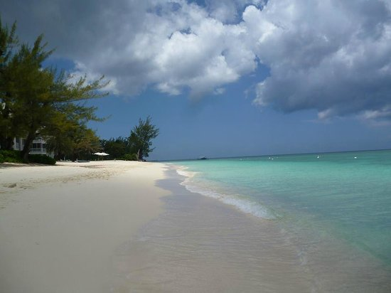 Grand Cayman Marriott Beach Resort : 7 mile beach