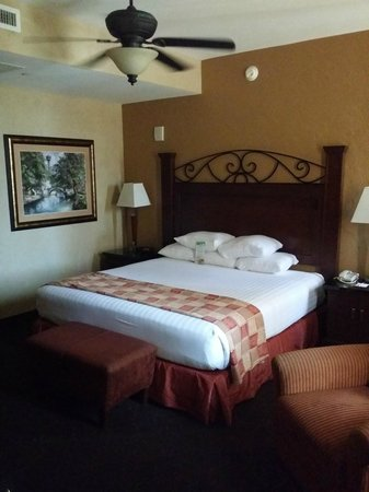 Drury Plaza Hotel San Antonio Riverwalk: Room 1121