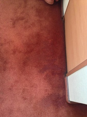 Astoria Hotel: Damp and mouldy carpet