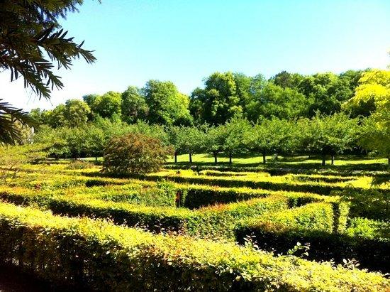 Chateau et Parc de Beauregard: Mini labyrinthe