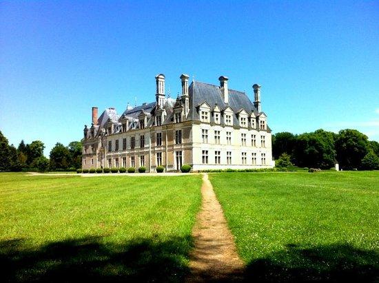 Park and Chateau de Beauregard: chateau vu de la foret