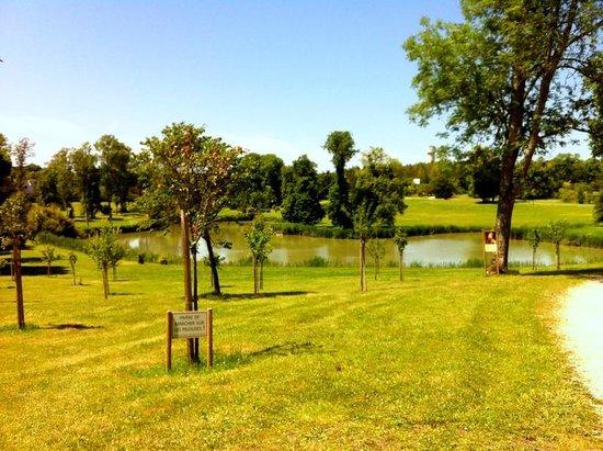 Park and Chateau de Beauregard: parc