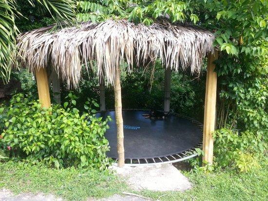 Jurassic Park Retreat : Trampolin