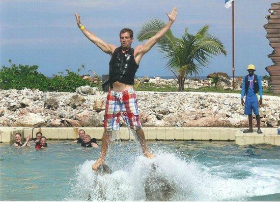 ClubHotel Riu Ocho Rios : Dolphin Swim