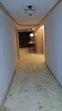 The Sutton Place Hotel Edmonton: Renovations in progress on our floor- walls, molding, flooring