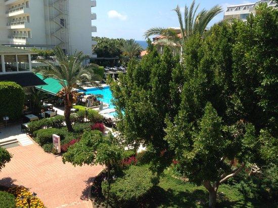 Gardenia Beach Hotel: территория