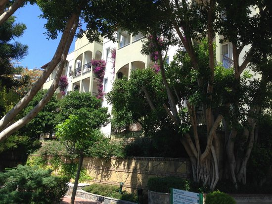 Gardenia Beach Hotel: корпуса