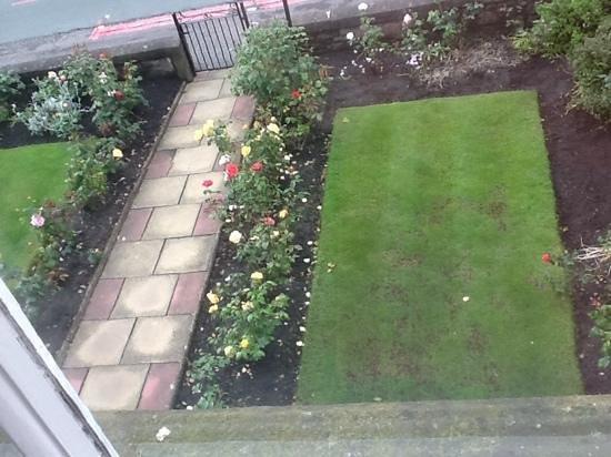 4Kt Guesthouse: Rose garden at 4Kt