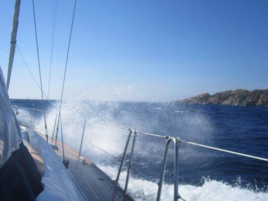 Sailing 5 Terre - Day Tours: ...il mare!!