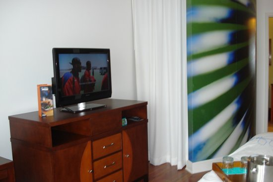 Hotel Indigo Jacksonville Deerwood Park: Television