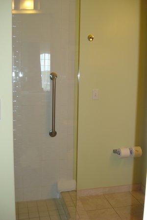 Hotel Indigo Jacksonville Deerwood Park: Shower
