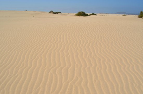 Dunas de Corralejo: in den Dünen
