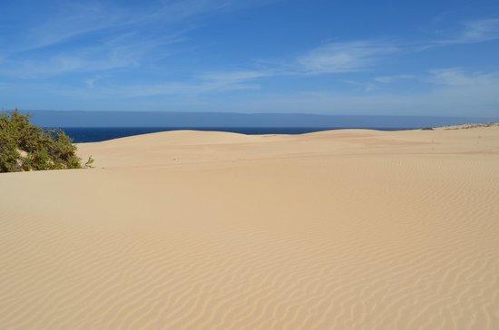 Dunas de Corralejo: Ausblick von den Dünen zum Meer