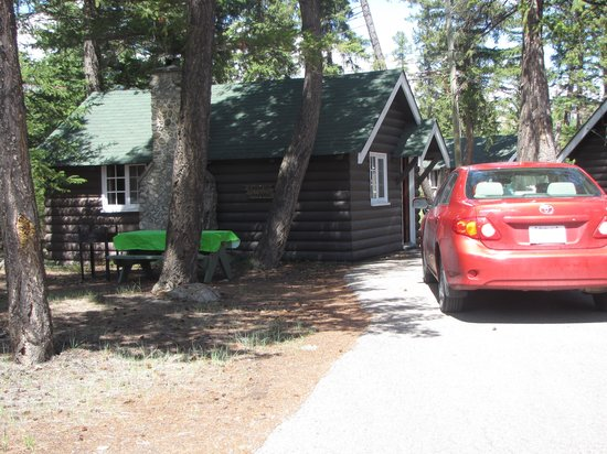 "Pine Bungalows: Our new ""home away from home!"""