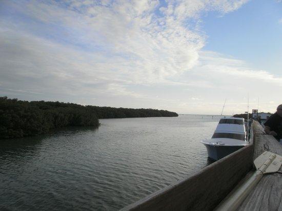 Burdines Waterfront: view 2