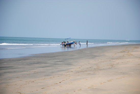 Kotu Beach 사진