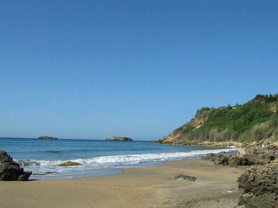 Ammes Hotel: Пляж немного дикий