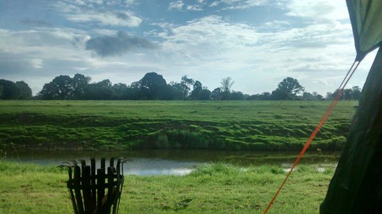 Brook House Farm Bed & Breakfast : Campsite by the river with fire pit/wood rented from the site