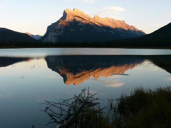 Vermilion Lakes: Por do sol em vermillion lakes