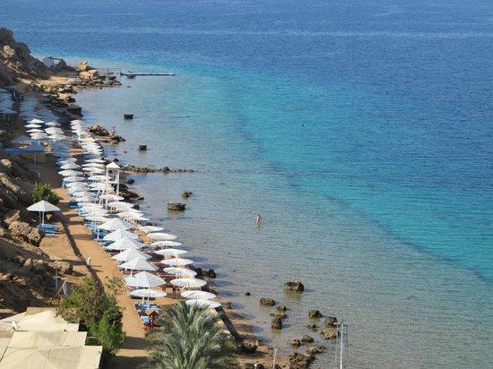 Beach Albatros Sharm : Пляж