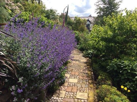 Lip na Cloiche Garden and Nursery: Colour and form