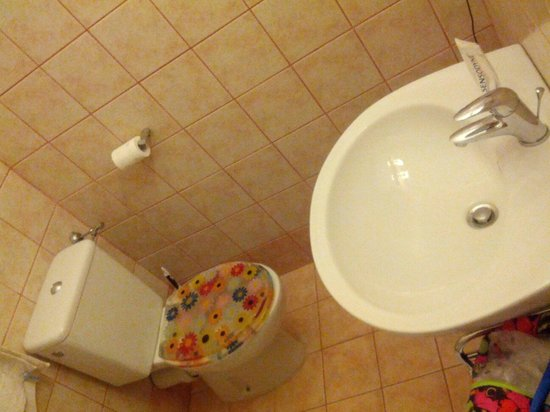 Bed & Breakfast Villa Sans Souci: Clean and nice private bathroom with great shower and flowery toilet seat.