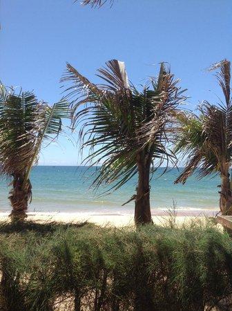 Green Organic Villas: Beach