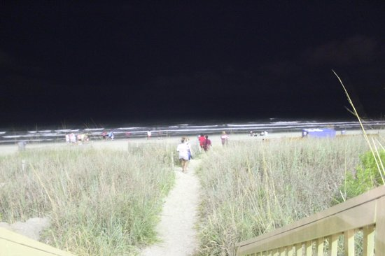 Bay Watch Resort & Conference Center : Trail to beach