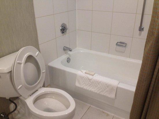 Hilton Boston / Woburn: Bathroom