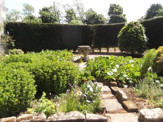 Stravithie Castle: secret garden