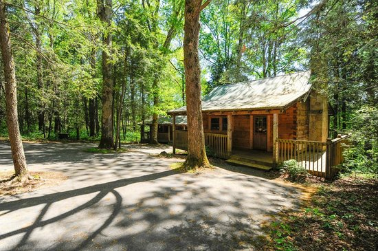 Dancing Bear Lodge: Little Greenbriar and Newfound Gap