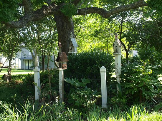 Rainbow Courts : Cool little bird houses nestled under a old oak tree.
