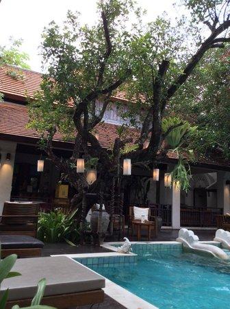 The Rim Resort: terrasse au bord de la piscine