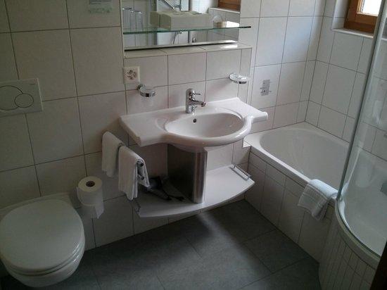 Hotel Mountain Paradise : Bathroom