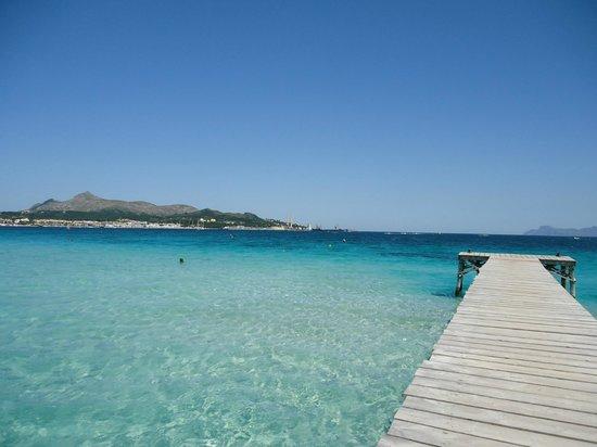 Paraiso de Alcudia: Den smukkeste strand lige ved hotellet