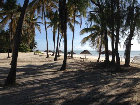 Cristal Resort: Beach view