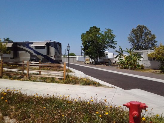 Olive Avenue RV Resort: narrow pads